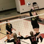 VOLLEYBALL: Panthers defeat Logansport Berries 3-0 in emotional contest