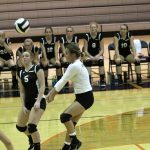 VOLLEYBALL: Panthers finish runner-up at Harrison (West Lafayette) Classic