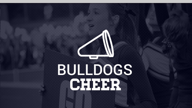 HIGH SCHOOL HEAD CHEERLEADING COACH OPENING