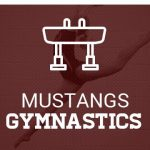 Gymnastics Homepage