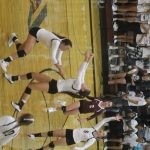 Volleyball vs. Holy Family (Sep. 18, 2018)