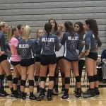 Volleyball: Cats win in five sets at Allegan