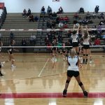 Volleyball: Cats fall twice at Coldwater Tri