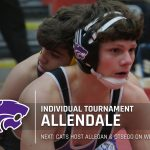 Wrestling: Allendale Individual Tournament
