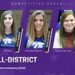 Competitive Cheer: Three Cats earn All-District honors