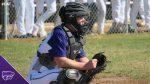 Baseball: Cats fall twice to PN