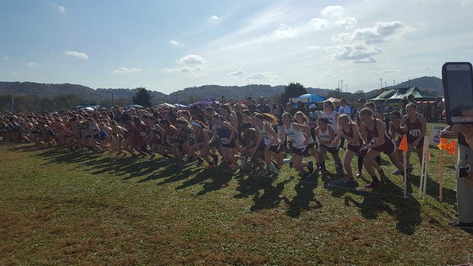 Cross Country Competes in State