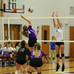 Lady Purple Tigers Volleyball Continues Dominance