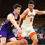 Final 4 basketball: Lewis-Palmer takes down Tigers
