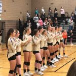 Volleyball: Tigers battle, ultimately lose to No. 7 Mead