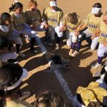 Softball: Tigers survive and advance to 4A semifinals