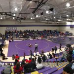 Wrestling: Tigers send two to semis in Region 3 Tournament