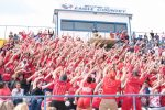 Springstead Fan Survey