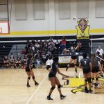 Lady Cougar Volleyball @ Marshall