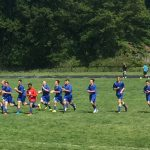 Boys Soccer Falls to Elyria Catholic