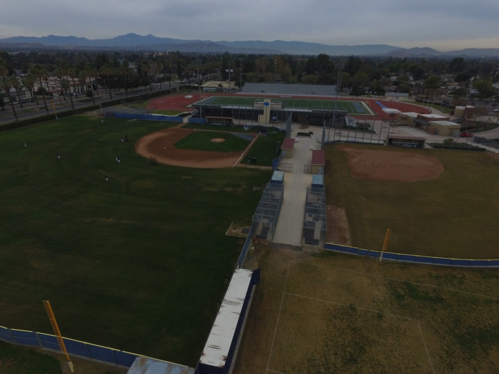 Baseball field's over-seeded turf ready for the season
