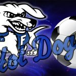 Boys Soccer Fall to 7th Ranked Red Devils