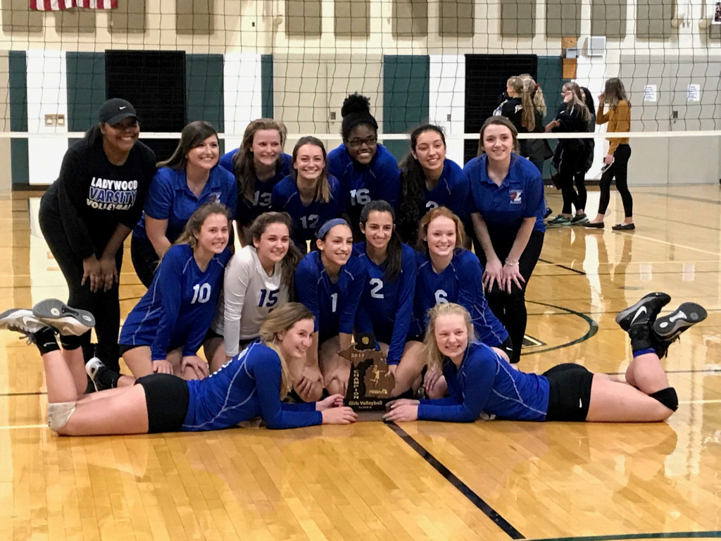 Volleyball Wins District Title!