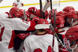 PHOTOS: Boys Hockey vs. Princeton (01-14-20)