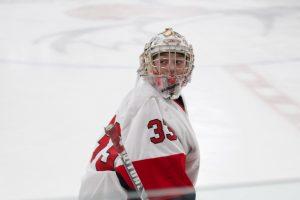 PHOTOS: Boys Hockey vs. Sauk Rapids-Rice (02-20-20)