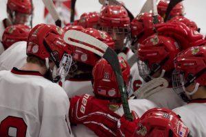 PHOTOS: Boys Hockey vs. Princeton (02-22-20)