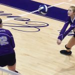 Canes Volleyball keep momentum with wins over Panthers, Tigers