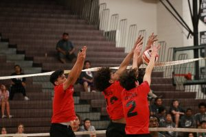 Boys Volleyball vs Bonanza