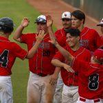 All-Mountain Region Baseball Selections