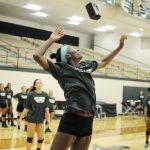 Check out Lady Hornet Volleyball Article!