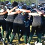 Lady Hornet Softball 2015