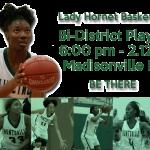 Lady Hornet BB –  Bi-District Playoff Information