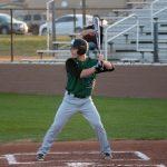 Hornet Baseball 3.14