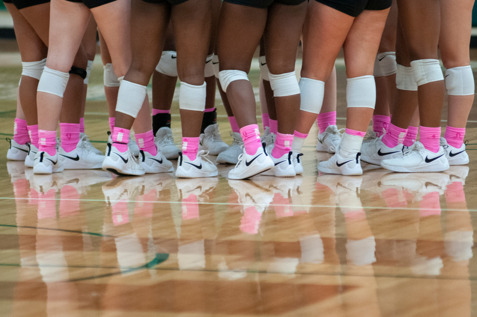 Lady Hornets VB – Pink Out was a success
