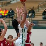 Lady Hornet Basketball – leading the district