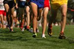 Hornet Cross Country Schedule Updates for MPMS and HHS
