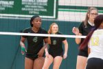 Lady Hornet VB Highlights - 11.3.2020