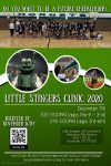Little Stingers Cheer Clinic