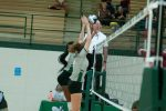 Highlights from  Whitehouse vs. Lady Hornet Volleyball for the WIN on 11.10