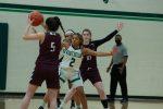 Lady Hornet Basketball vs. Whitehouse 2.2.2021