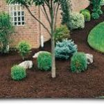 Mulch Madness at The Mill  3-19-16 at 8AM