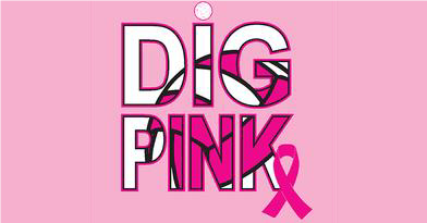 Annual Dig Pink Volleyball Game  – 10/16/2019