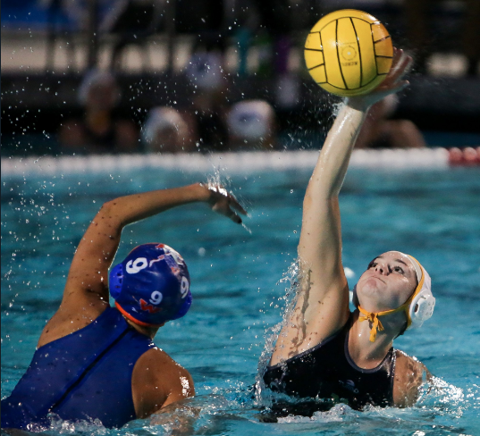 Girls Water Polo Tryout Information
