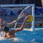 Water Polo Hosts #1 seed Los Osos in Water Polo 11/1 at 3:30
