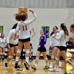 Playoff Picture: GIRLS VOLLEYBALL