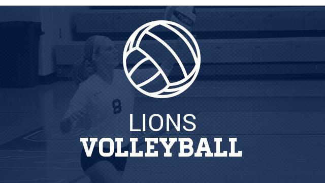 Casey Menn named Head Volleyball Coach