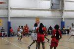 Lady Lakers Fall at Michigan Collegiate
