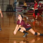 Watervliet High School Volleyball Varsity beats Bloomingdale High School 3-0