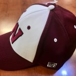 Panther Baseball Caps Available Now