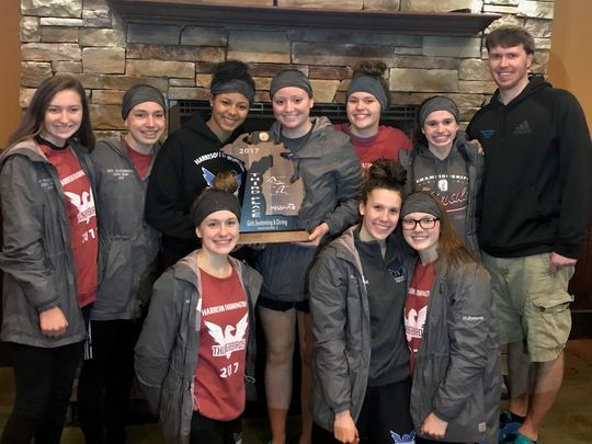 Harrison-Farmington's record-setting day nets 3rd place at D-1 state swim meet