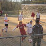 Powdersville High School Girls Junior Varsity Soccer falls to Palmetto High School 2-3